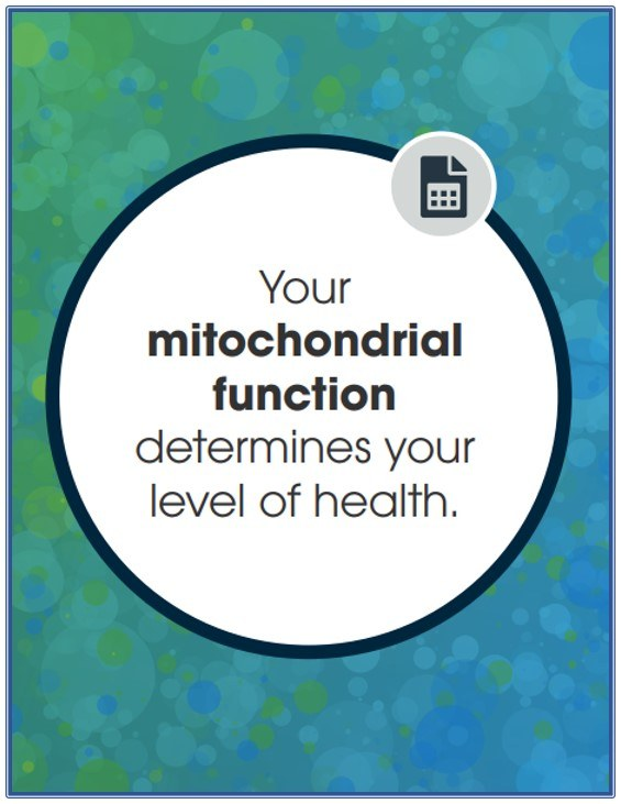 Cell Core - Your Mitochondria Function