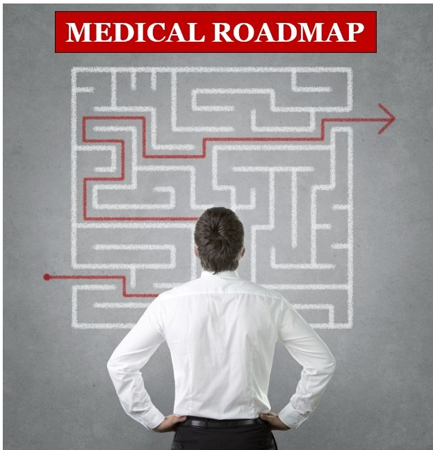 Medical Maze - Roadmap