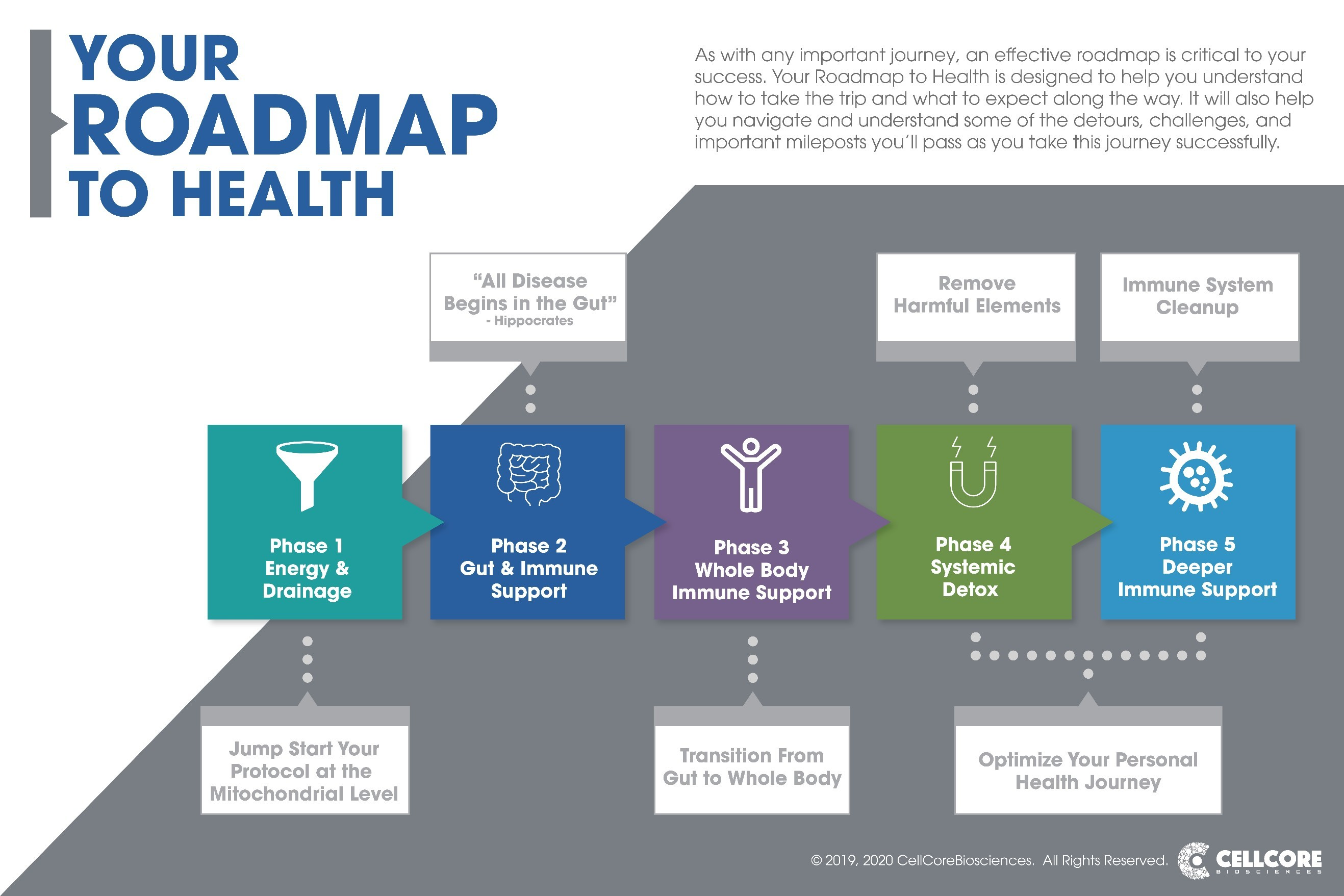 Your Roadmap to Health - Large
